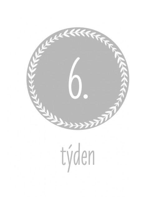 Těhotenské milníkové kartičky Typografie