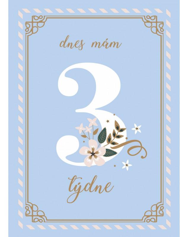 Milníkové kartičky BLUE